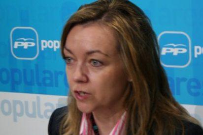 """López: """"Page no llega a tapar los agujeros de los cinco Partidos Socialistas que tiene en la región"""""""