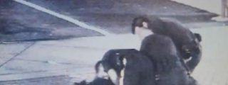 [Vídeo] La Policía le da una paliza por protestar y un perro remata la faena a mordiscos