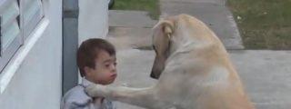 [Vídeo] La historia del niño con síndrome de Down y el perro que logró ser su amigo