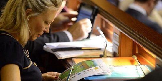 Una diputada canaria le hace los deberes a su hijo en el Parlamento por falta de tiempo
