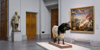 La naturaleza entra en el museo