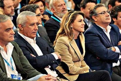 """El candidato """"todoterreno"""" toma la delantera en el final de la carrera del PP andaluz"""