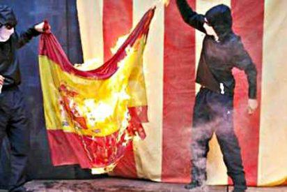 La Ley de Seguridad Ciudadana sancionará con faltas muy graves las ofensas a España
