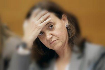 Las doce mentiras y contradicciones de la directora general y verdugo de RTVV