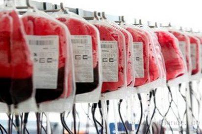 Crean sangre artificial 'multiuso' compuesta por agua, sal y proteína sacada de gusanos
