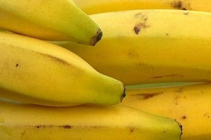 Unos 400 millones de personas nos podemos quedar sin comer bananas por el 'mal de Panamá'