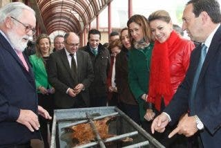 Cospedal anuncia que se han pagado 56 millones de euros en concepto de ayudas para desarrollo rural
