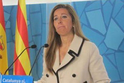 El PP multiplicará su presencia en Cataluña para poner freno a la consulta