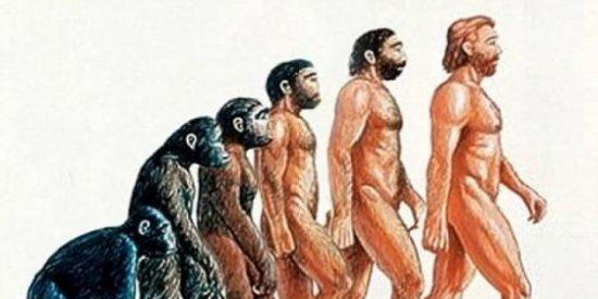 El descubrimiento que hace tambalear la 'Teoría de las especies' de Darwin