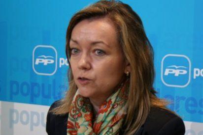 La Mesa no admite a trámite 104 de las 206 enmiendas presentadas por el PSOE