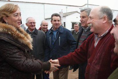 Soriano avanza que la producción de aceite superará las 100.000 toneladas