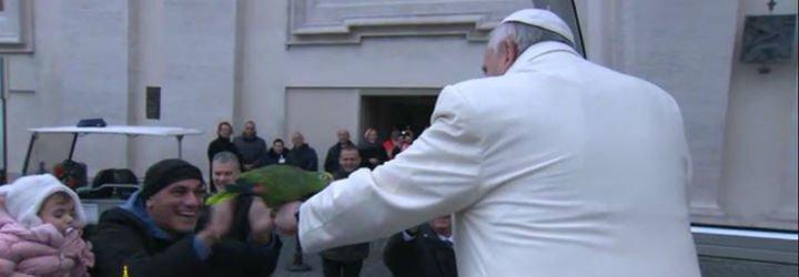 """El Papa pide que no se abandone la confirmación, para que """"no nos avergoncemos jamás de la cruz"""""""