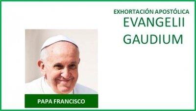 Francisco y sus declaraciones en materia económicosocial
