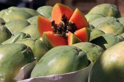 La papaya es nuestro mejor aliado para no dejar ni rastro de tanto exceso navideño