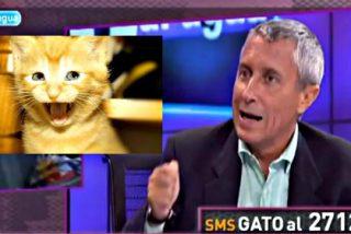 'El Gato al Agua' de Intereconomía TV no pegará ni un maullido y 'Punto Pelota' se queda en el vestuario
