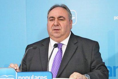 Tirado asegura que el empleo seguirá siendo la mayor prioridad para el PP en 2014