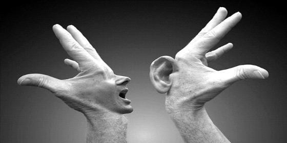 Dos siberianos borrachos como cubas se cortan las orejas por una absurda apuesta