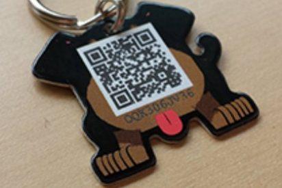 Estudiantes de Veterinaria idean un innovador sistema para encontrar mascotas extraviadas