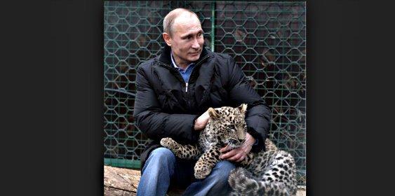 Putin pone a los periodistas como ejemplo al leopardo que se aparea 274 veces por semana
