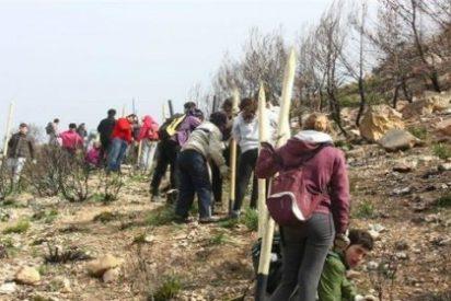 La recuperación de la reserva biológica de la Trapa es posible gracias a los voluntarios