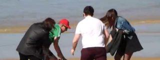 El perturbador vídeo del pit bull que ataca a cinco personas en la playa de la Concha