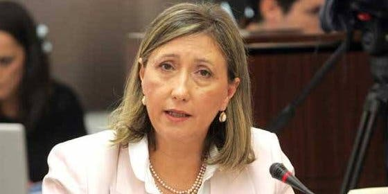 """Nogales asegura que """"ninguna familia se va a quedar sin libros"""" a la entrada en vigor de la Ley Wert"""