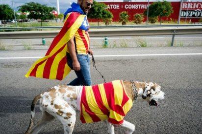 Cataluña hablaría castellano si se independizara