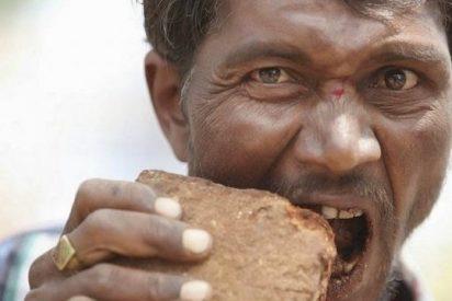 Un extraño sujeto come ladrillos a destajo como si fueran empanadillas y no hay quien lo pare
