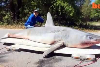 El vídeo del pescador que saca del mar a carrete al terrorífico tiburón de 365 kilos