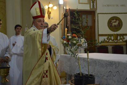 Francisco plantará un olivo argentino en Getsemaní
