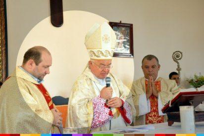 Comisión internacional pide al Papa la extradición de Wesolowski