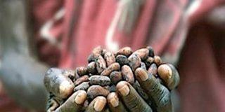 Por culpa de los chinos el chocolate se pondrá por las nubes y nos sabrá amargo