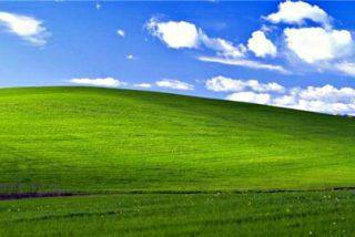 La historia de la foto más vista del mundo: El fondo de pantalla de Windows XP