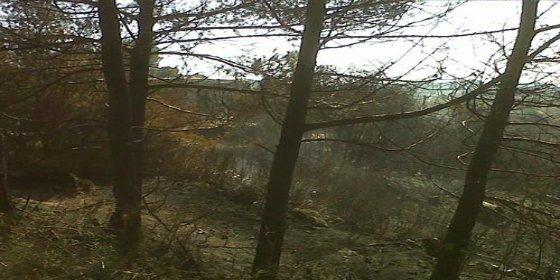 Un total de 17,65 hectáras se han quemado en Es Cubells por culpa del 'despistado'
