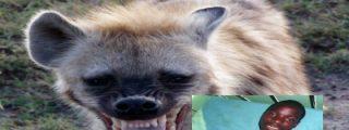 Un joven deja que una hiena le coma los testículos para convertirse en millonario
