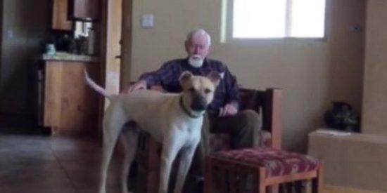 [Vídeo] Un hombre con alzhéimer recupera el habla gracias a su perro