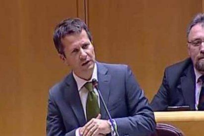 El papelón de un senador del PNV con 'Ocho apellidos vascos'