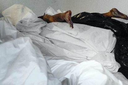 La Guardia Civil detiene los bidones con los cadáveres de la Universidad Complutense