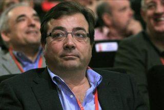 El PSOE de Guillermo Fernández Vara no 'poliniza' en Extremadura