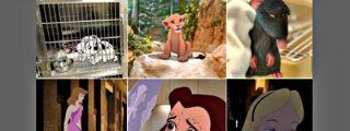 ¿Y si en lugar del comieron perdices tuvieran final infeliz las películas de Disney?