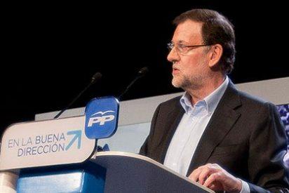 """Un sector del PP, molesto con Rajoy: """"Ha descuidado mucho al partido"""""""