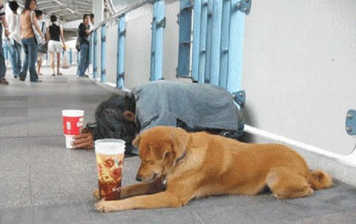 ¿Qué está pasando? ¡Hasta personas con empleo viven en España por debajo del umbral de la pobreza!