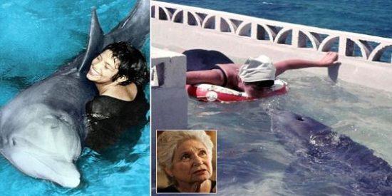 El delfín que se suicidó tras perder el amor de la mujer que quiso hacerle hablar