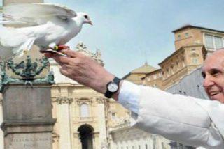 Los obispos españoles se suman al encuentro por la paz de este domingo en el Vaticano