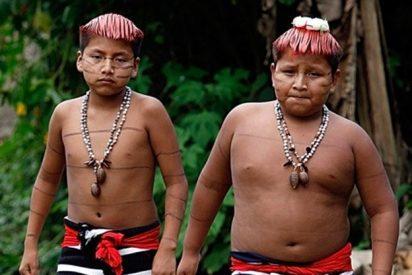 Una petrolera extrae ilegalmente sangre a indígenas ecuatorianos y se queda tan fresca