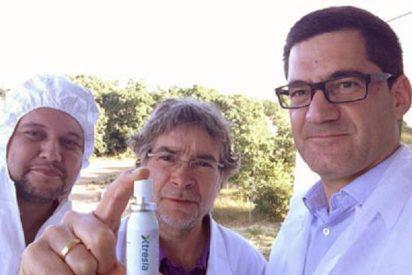 ¿Tienes estrés por tanto trabajo? Investigadores leoneses crean un espray que te lo quita de un soplo