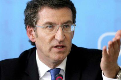 Los ecos de la llegada de Feijóo al Gobierno de Rajoy alborozan al PP