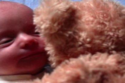 La tierna historia del oso y de su amigo el bebé que rompe corazones en YouTube