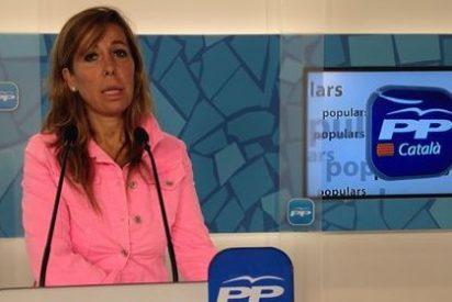 """Camacho cree que el fraude de Pujol explica las """"prisas"""" por crear la Hacienda Catalana"""