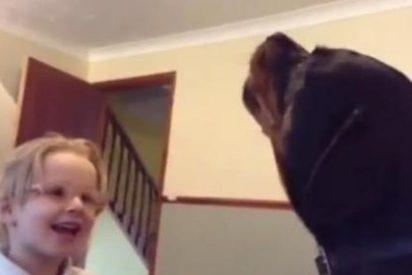 Un 'peligroso' Rottweiller y una niña cantan a dúo una canción de cuna
